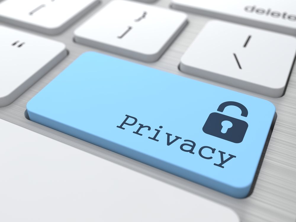 Website Developer company privacy