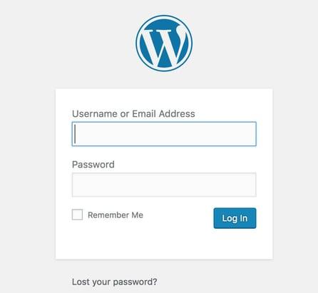 WordPressWebsite1